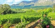 /_uploads/images/branch_tours/southafricanature_day9_stellenbosch.jpg