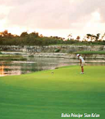/_uploads/images/resorts/golf-bahiaprincipe.png